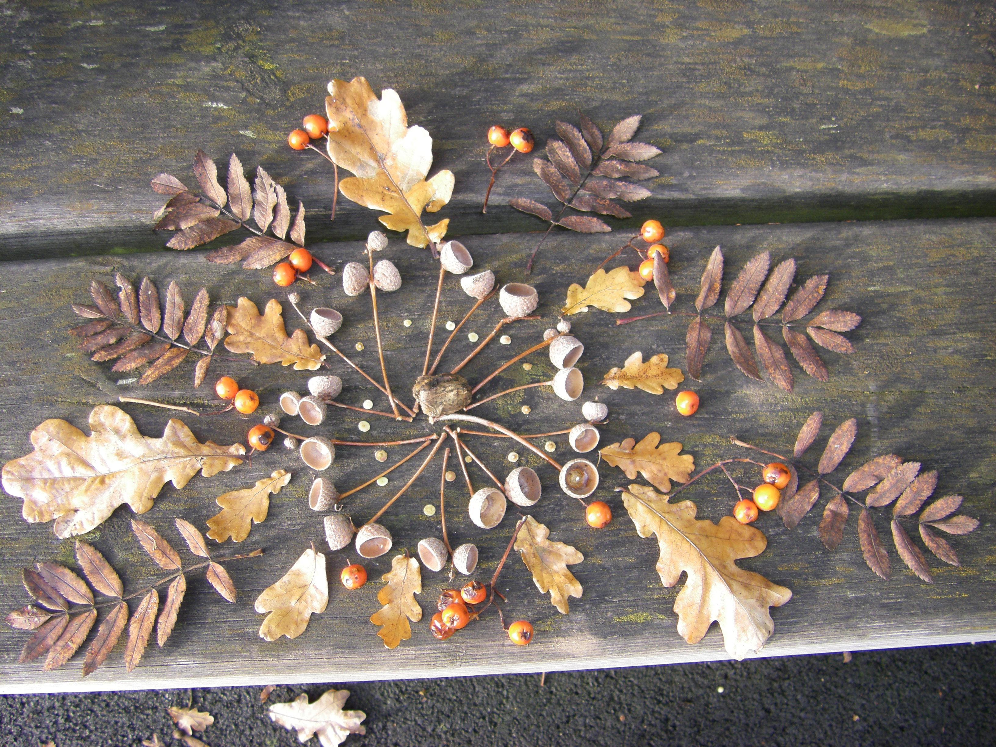 Nature mandalas dawnchoruseducational - Mandala nature ...